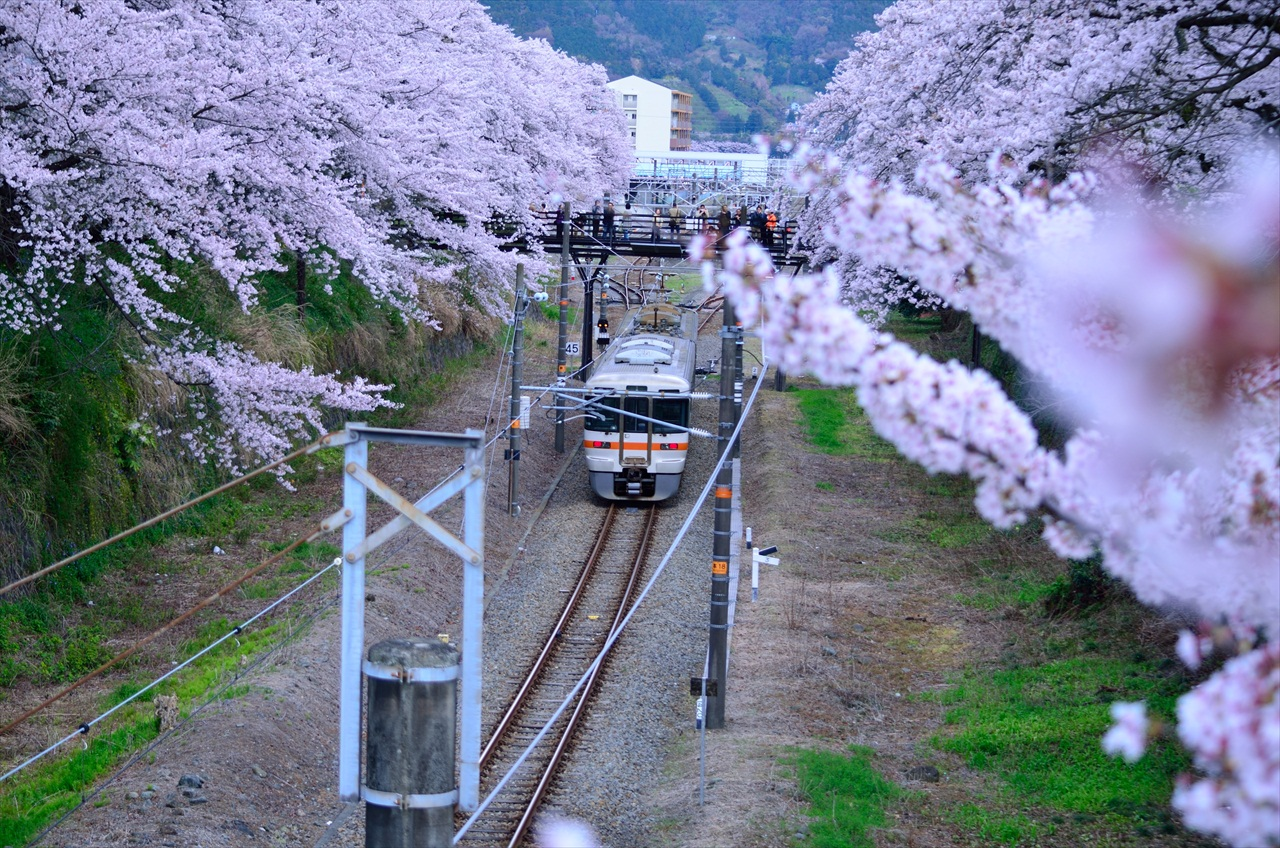 313_yamakita_050414.JPG